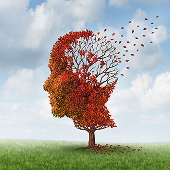 Perspectives on the Challenges of Alzheimer's Disease